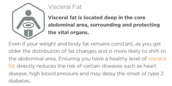 viceral-fat1